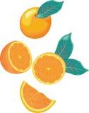 Mélange orange illustration libre de droits