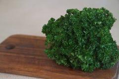 Mélange végétal XII Photos libres de droits