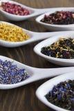 Mélanges de thé images stock