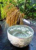 Mélanges traditionnels de l'eau de parfum de la Thaïlande avec des fleurs photo libre de droits