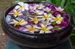Mélanges traditionnels de l'eau de parfum de la Thaïlande avec des fleurs images stock