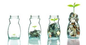 Mélangez les pièces de monnaie et la graine dans le blottle clair sur le fond blanc, affaires Photo stock