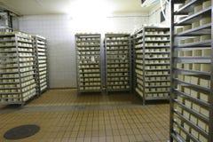 Mémoire de fromage dans la laiterie photo stock