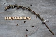 mémoires Images stock