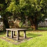 Mémorial de pierre avec l'arbre d'if Photographie stock libre de droits
