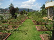Mémorial Garde de génocide du Rwanda Image libre de droits