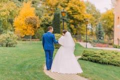 Ménages mariés nouvellement flânant en parc Le marié tient doucement la main de sa jeune mariée élégante Image stock