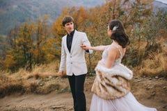 Ménages mariés nouvellement posant dans les montagnes Photos libres de droits