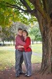 Ménages mariés sous l'arbre s'étreignant photographie stock libre de droits