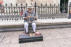 Mérida/Yucatan, Mexiko - 31. Mai 2015: Künstlermann, der Säge vor der Kathedrale in Mérida spielt Lizenzfreie Stockbilder