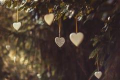 Métal blanc et coeurs en bois accrochant en nature, amour de célébration Photographie stock libre de droits