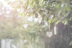 Métal blanc et coeurs en bois accrochant en nature, amour de célébration Photo libre de droits