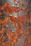 Métal rouillé Image stock