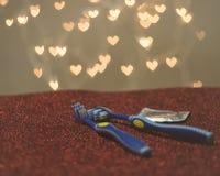 Métaphore bleue de visuel de brosse à dents de couples gais de LGBT Image stock
