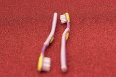 Métaphore gaie de visuel de brosse à dents de couples de la lesbienne LGBT Photos stock