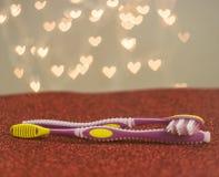 Métaphore gaie de visuel de brosse à dents de couples de rose de LGBT Photo libre de droits