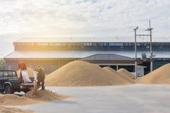 Méthode sèche de foyer brouillé et mou de doux abstrait de paddy brun Photo stock