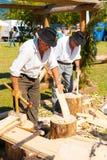 Método de madeira tradicional V da construção dos cumes franceses Fotos de Stock Royalty Free