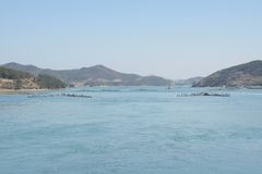 Método tradicional coreano para pescar a anchova Foto de Stock