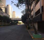 México sin humanos1 Stock Photos