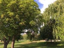 Même la promenade au parc appréciant la température chaude d'été Images libres de droits