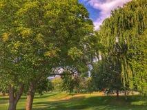 Même la promenade au parc appréciant la température chaude d'été Photos libres de droits