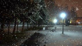 Même la promenade en parc de ville pendant la première neige, un beau paysage urbain égalisant clips vidéos