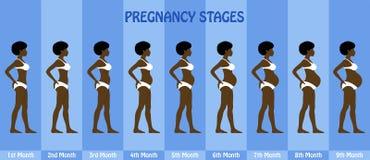 Mês a mês fases da gravidez da mulher afro grávida com biki ilustração do vetor