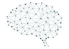 Móżdżkowe sieci Obrazy Stock
