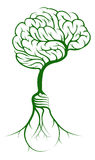 Móżdżkowi drzewni lightbulb korzenie Fotografia Stock