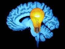móżdżkowy żarówki pomysłu światło royalty ilustracja