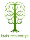 Móżdżkowy drzewny pojęcie Zdjęcia Stock