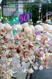 Móbil feito dos vários shell Imagens de Stock Royalty Free