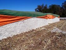 Módulos del algodón Foto de archivo libre de regalías