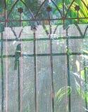 Mój cień Patrzeje do ja Obraz Stock