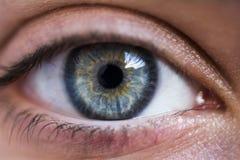 Mój dziewczyn oczy zdjęcie stock