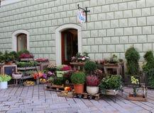 Mój neighbourhood, jesieni dekoracja floristObraz Stock
