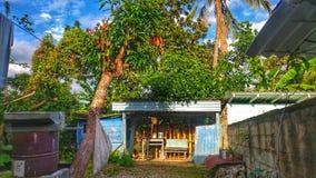 Mój podwórko w Kuba Obraz Royalty Free