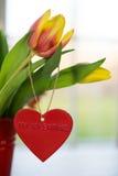 Mój valentine Zdjęcia Stock