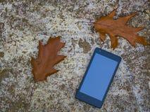 Móvil en naturaleza en una textura rocosa Imagen de archivo