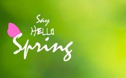 Mówi wiosnę i menchie na zielonym rozmytym tle blutterfly Cześć, wektor eps 10 obraz royalty free