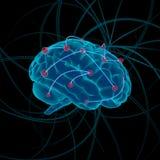 mózg bw koloru cztery ilustraci różnica royalty ilustracja