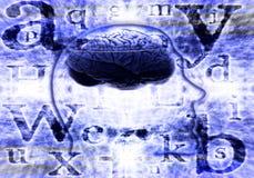 mózg cyfrowy Obraz Royalty Free