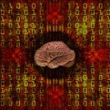 mózg cyfrowy ilustracji