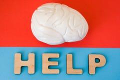 Mózg z pomocy słowem Anatomiczny model ludzki mózg jest na czerwonym tle, pod listami które robią słowo pomocy na błękitnym tle Zdjęcie Royalty Free