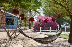Möblemanghängmatta i trädgård Royaltyfri Foto