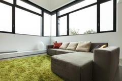 Möblerad lägenhet, vardagsrumsikt Arkivfoton