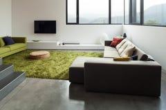Möblerad lägenhet, vardagsrumsikt Royaltyfri Bild
