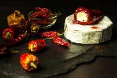 Möglig ost och peppar på en svart bakgrund chili torkade peppar Kryddig möglig ost arkivfoto