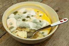 Möglig pudding Giftig mat mycket av formen sjuklig mat Spor av svampen för mat Royaltyfri Bild